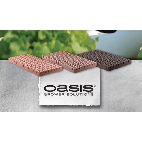 Oasis® HORTICUBES Seed Propagation Medium