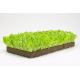 Oasis® HORTICUBES XL Seed Propagation Medium