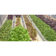 NFT Hydro Microgreens Open Top Profile (1.825m)