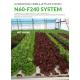 Commercial 60:240 NFT System
