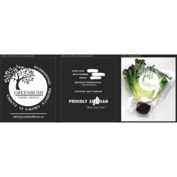 NFT Hydro Fresh Produce Packaging Logo Design & Supply Services.