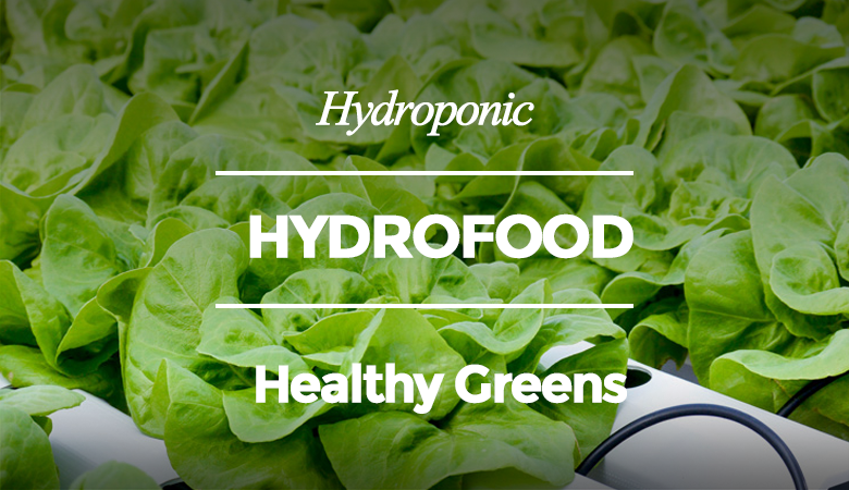 Hyrofood for Healthy Greens